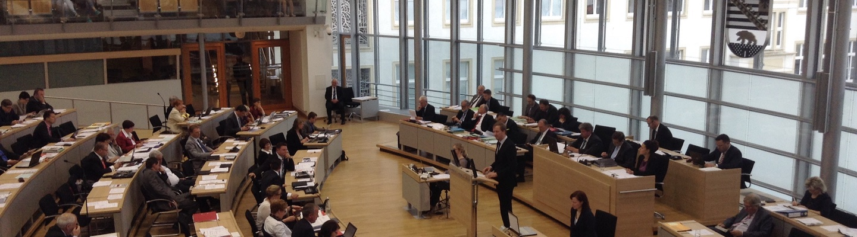 Sören Herbst, Grüne, im Landtag von Sachsen-Anhalt